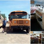 Check Out This Couple's Fully Converted Blue Bird Bus Home and Office!