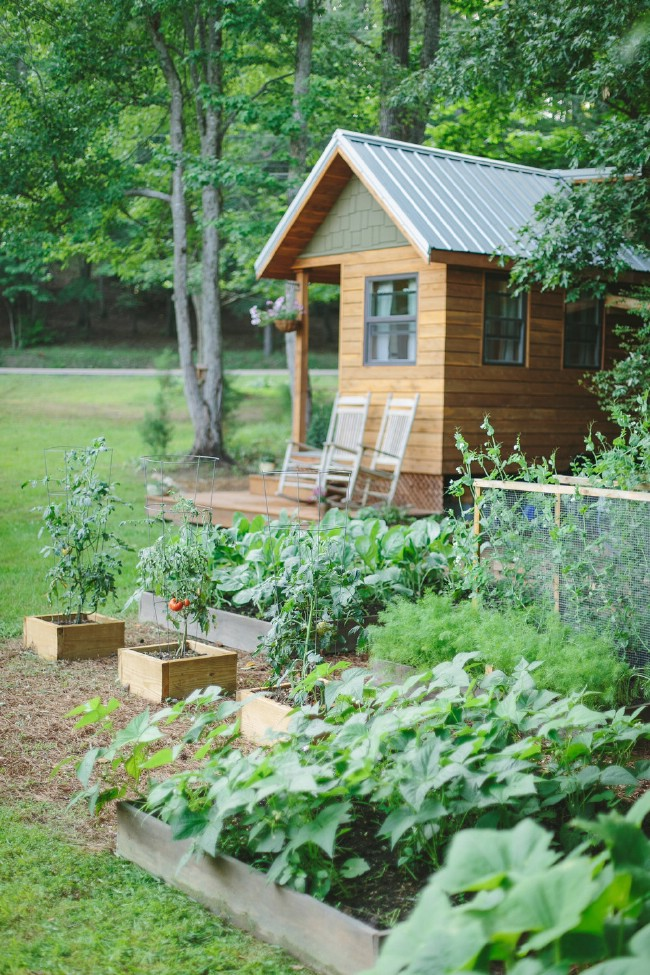 This Couple Built a Tiny Home and Found Freedom