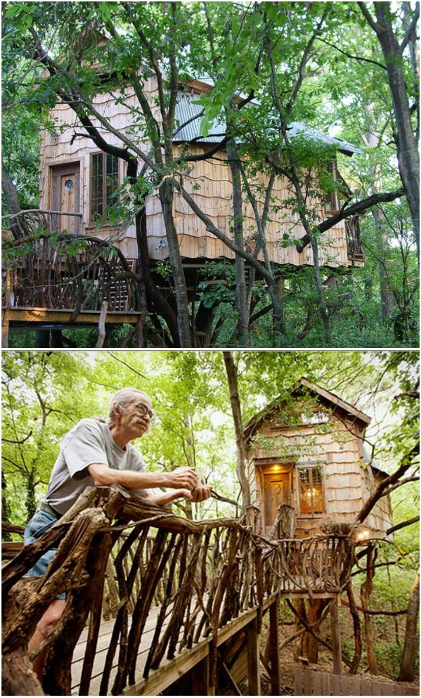 Phoenix Commotion Tree House