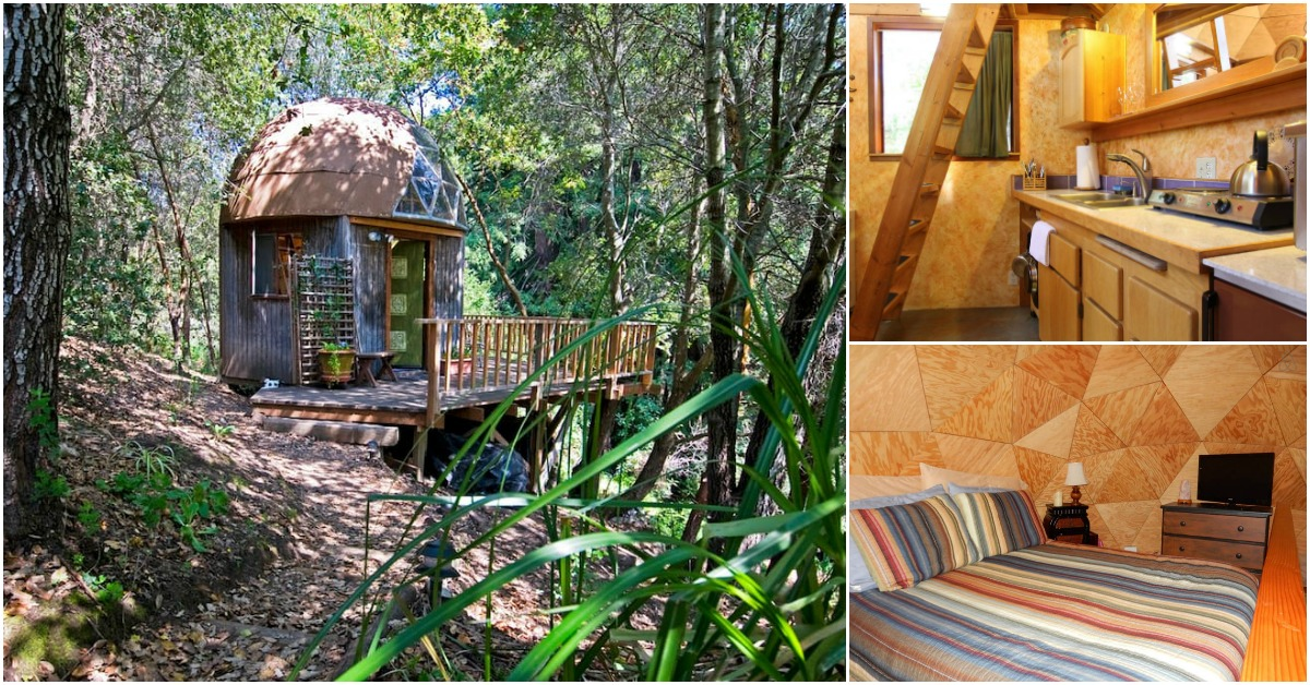Stay in the mushroom dome tiny house in aptos california for Airbnb cabins california