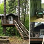 Beautifully Simplistic Tiny House High in the Trees on 1.3 Acres