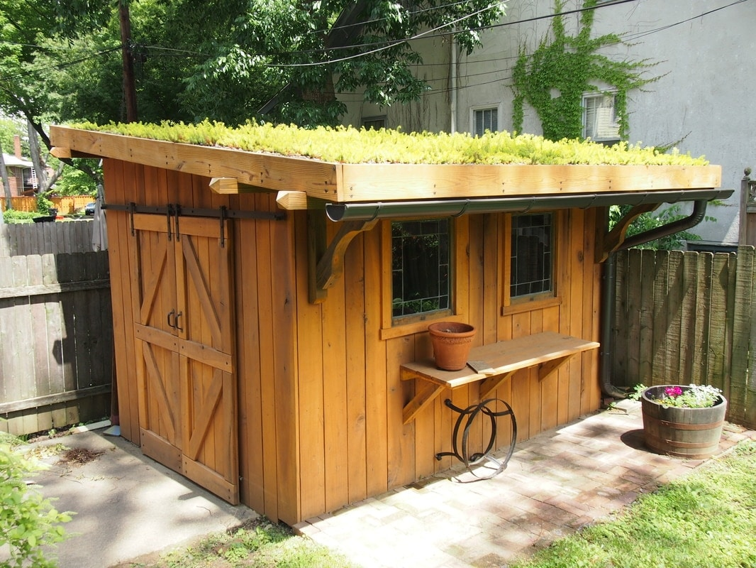 Top 80 gorgeously comfortable she sheds and backyard tiny for Shed roof tiny house