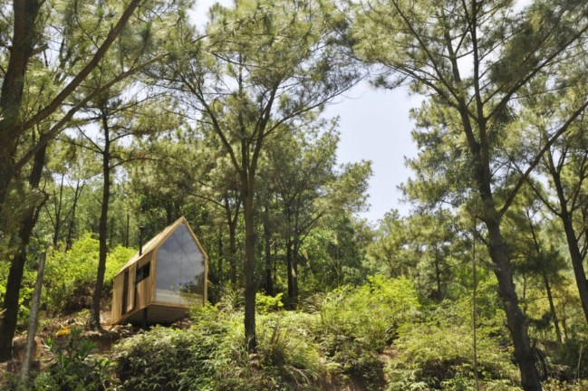 This Vietnamese Tiny House Is an Elegant Meditation on Its Surroundings
