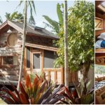 This Tiny House Is Hidden Away in the Lush Tropics of Kauai