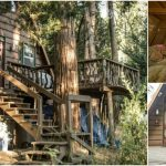 """Go """"Glamping"""" in a Cool A-Frame Cabin in San Jacinto"""