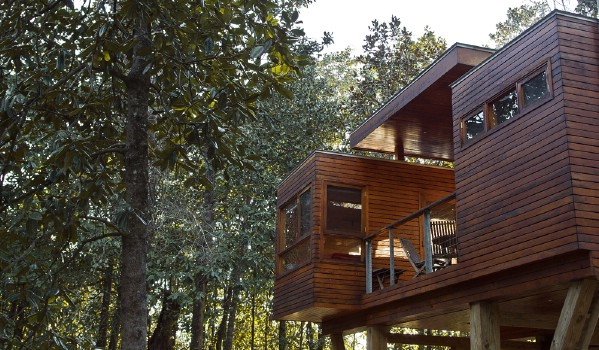 Stay in a Modern Treehouse at Coldwater Gardens