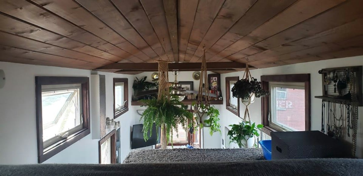 View from loft with ferns and wood ceiling