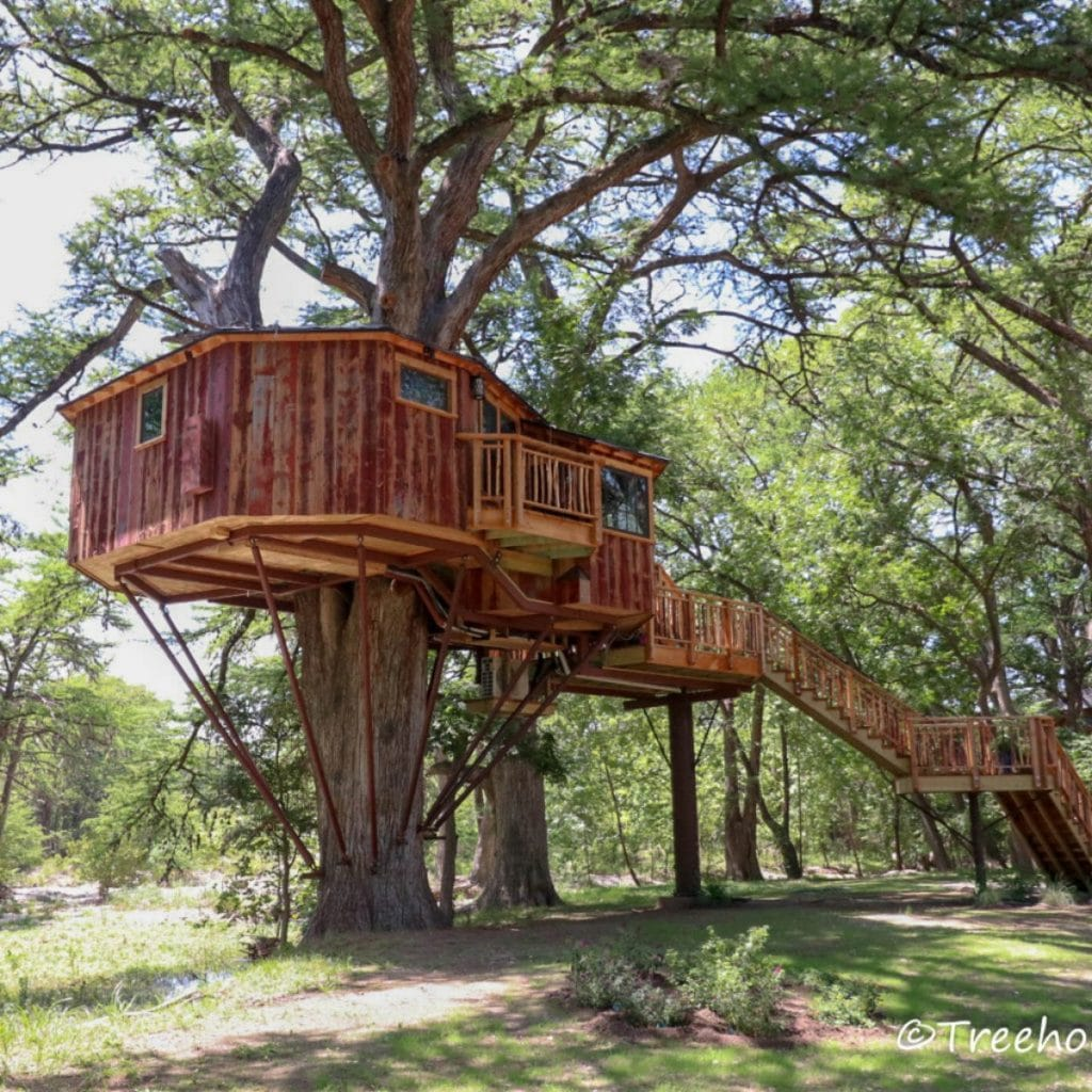 Carousel treehouse