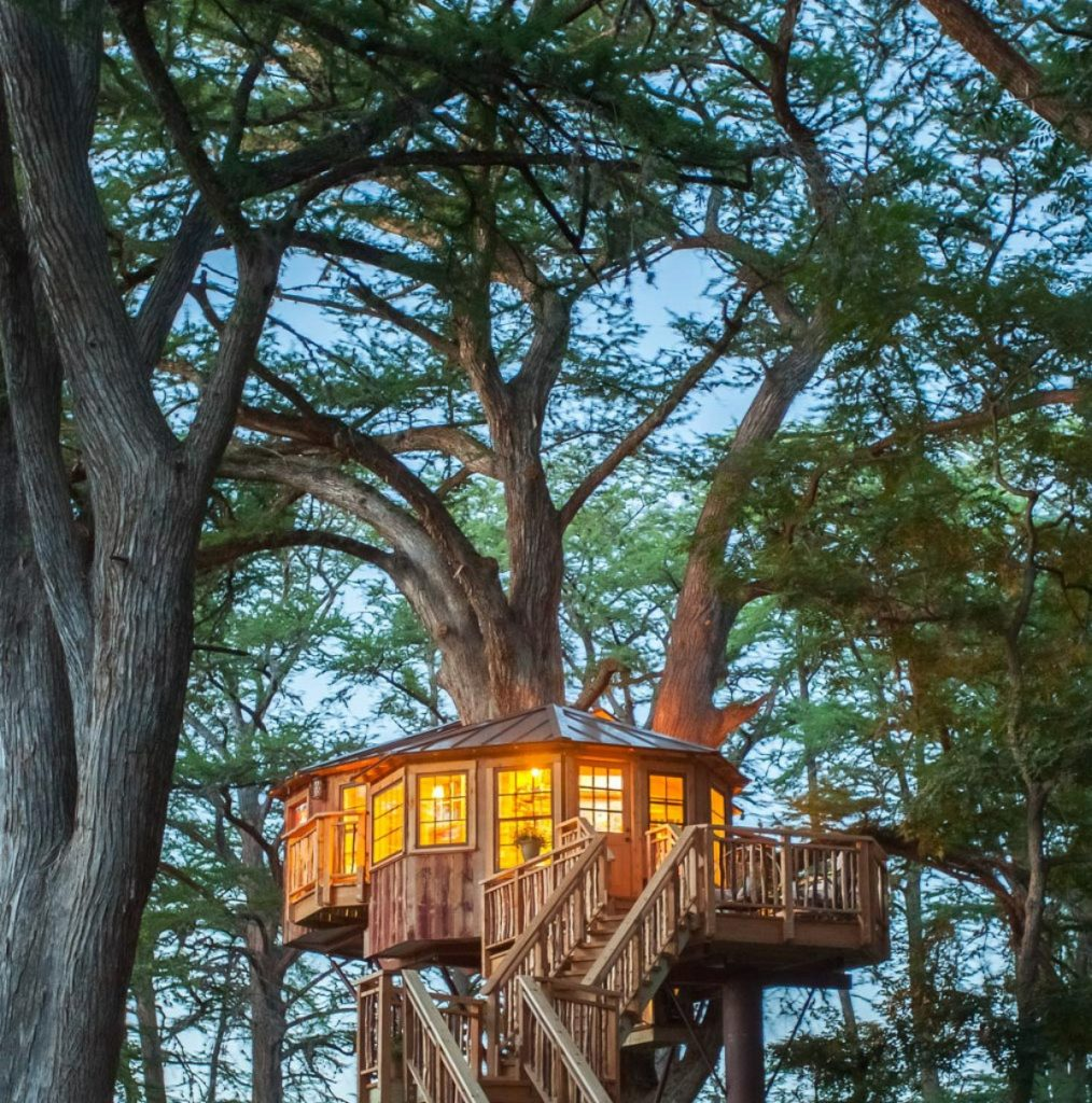 Carousel treehouse after dark