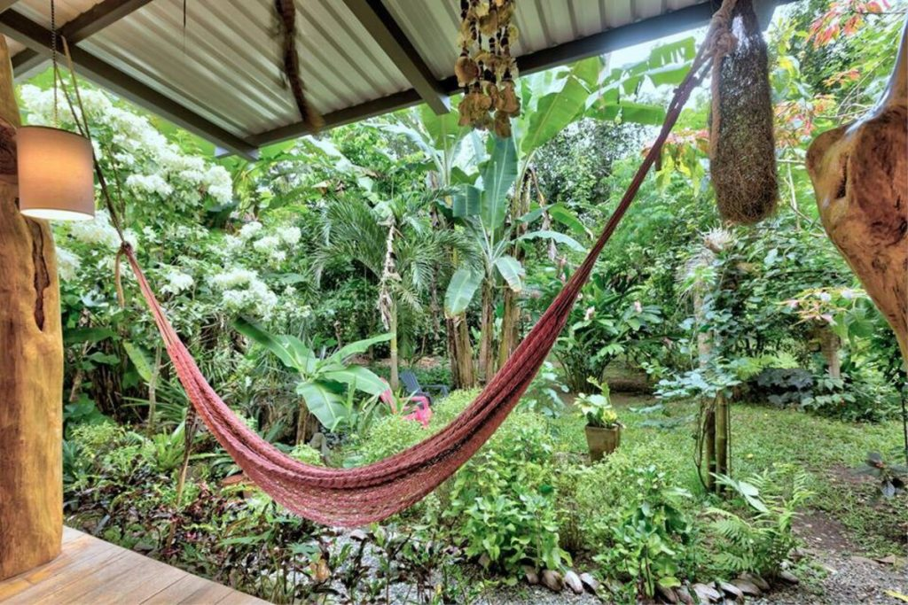 Hammock by jungle