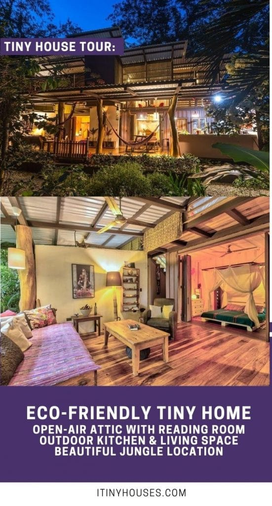 Jungle container house collage