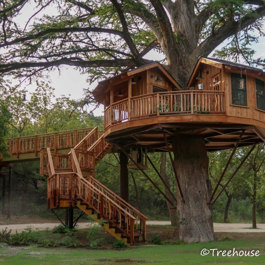 Biblioteque treehouse