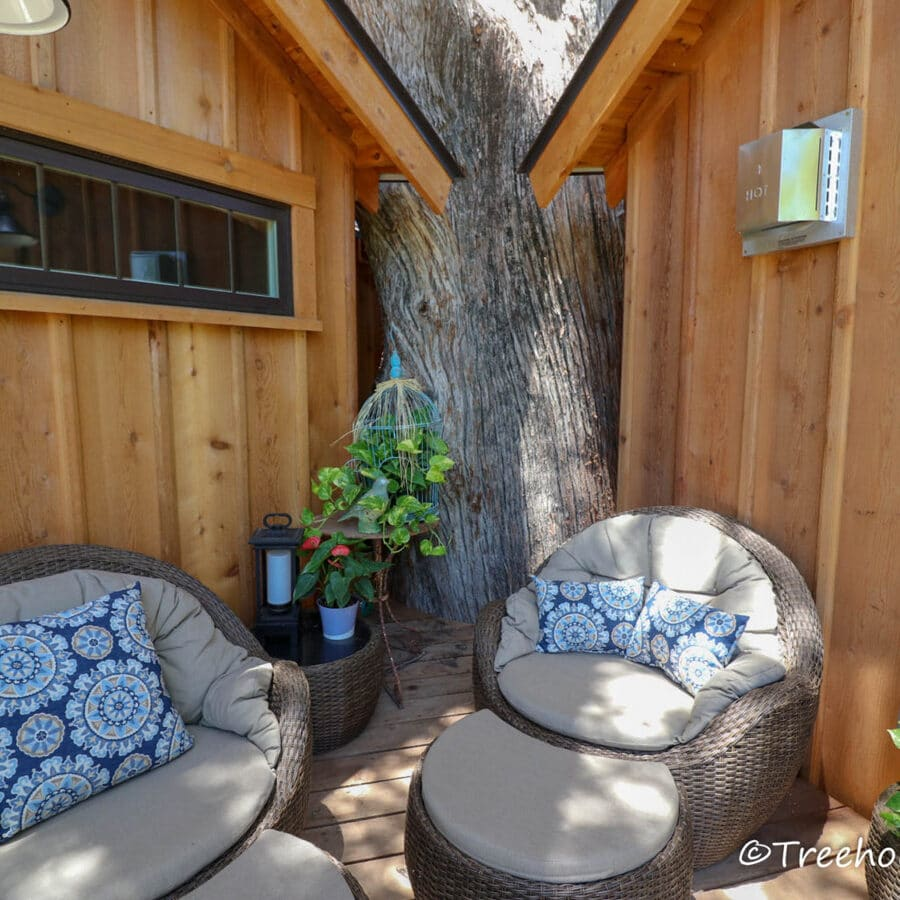 Tree between treehouse sides