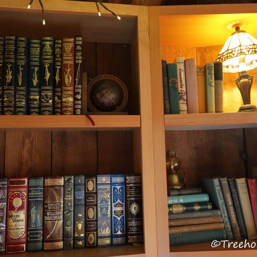 Bookshelf with old books