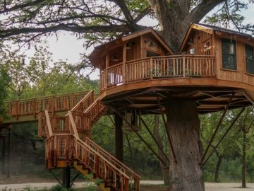 Biblioteque treehouse
