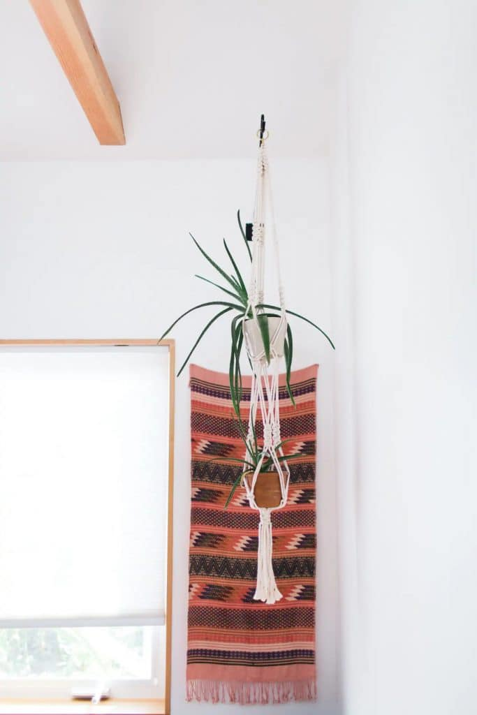 Tapestry with hanging plant