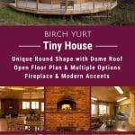 Birch yurt collage