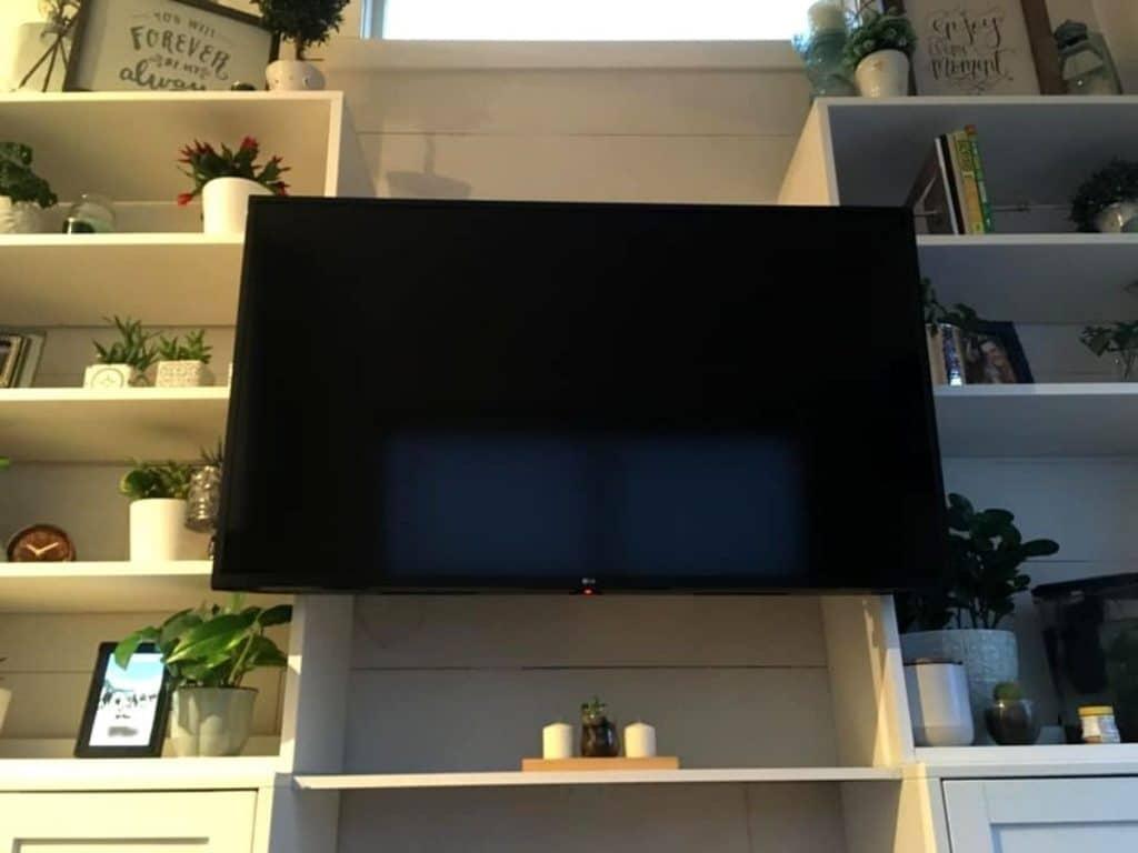 TV between shelves