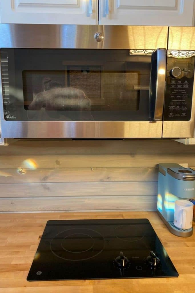 Tiny house microwave and oven