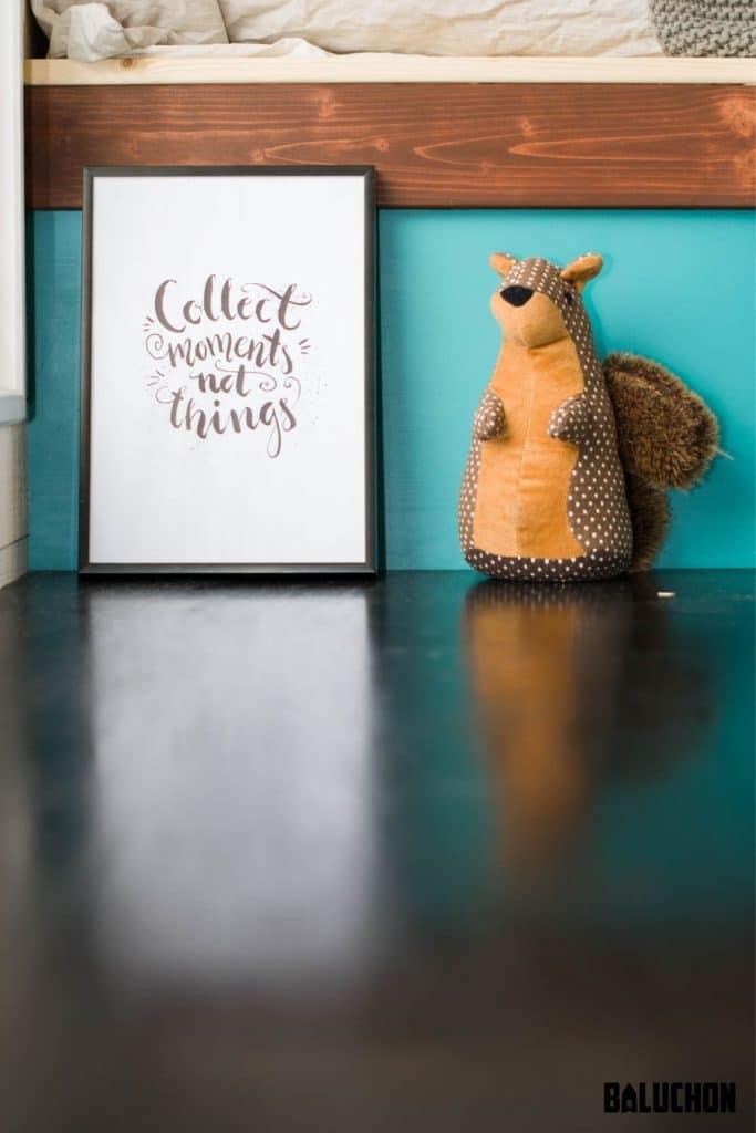 Squirrel on shelf