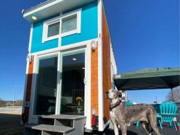Teal accent siding on tiny house with front glass doors