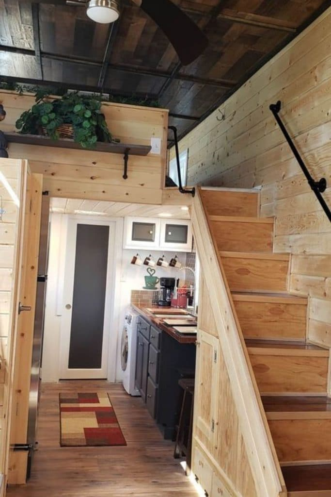 Stairs leading to loft with shelf holding plant above kitchen