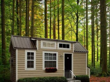 Tan and white tiny house in woods with steps at door