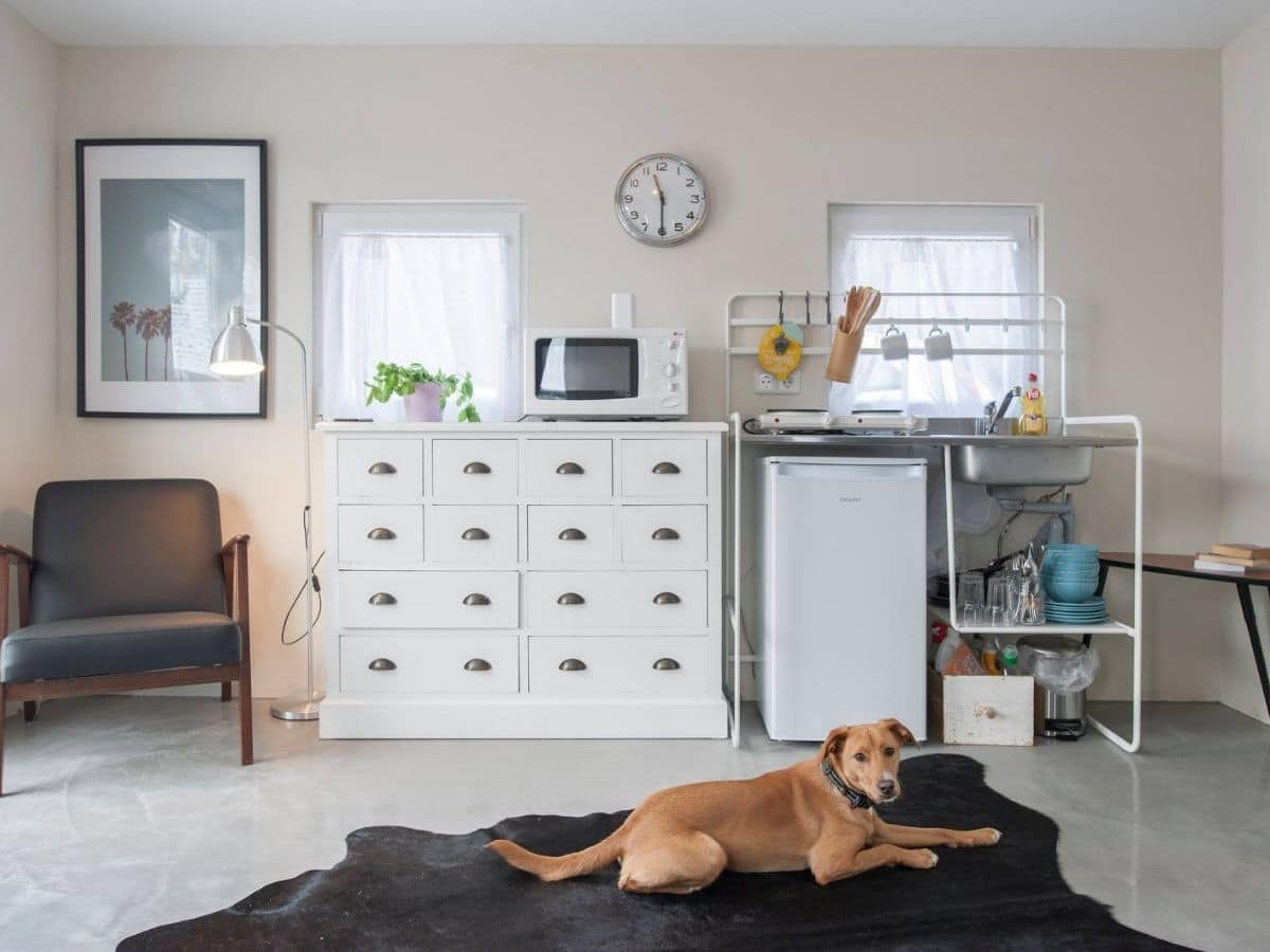 White dresser against wall next to shelf with mini white refrigerator with dog on rug in front